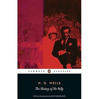 Historien om hr. Polly