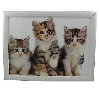 Laptop lap pillow or cushion Kittens