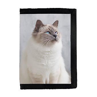 猫聖なるバイマウォレット