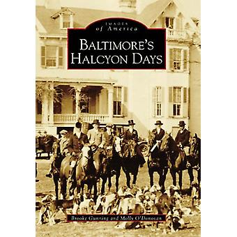 Baltimore's Halcyon Days by Brooke Gunning - 9780738506319 Book