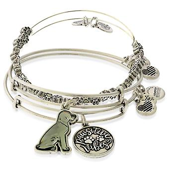 Alex And Ani Pawsitive Vibes Set of 3 - RS