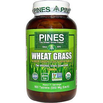 Pines International, Organic, Wheat Grass, 500 mg, 500 Tablets