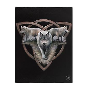 Anne Stokes Wolf Trio Canvas Plaque