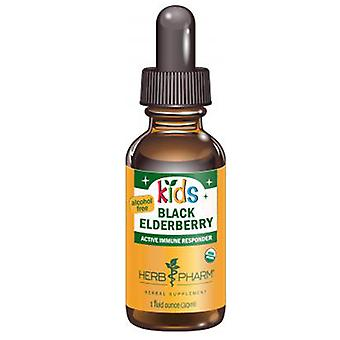 Herb Pharm Kids Black Elderberry Glycerite, 1 fl oz