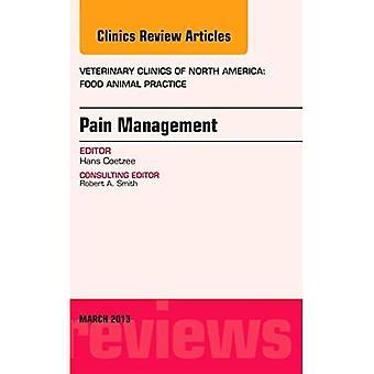 Schmerzmanagement