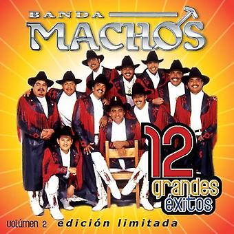 Banda Machos - Banda Machos: Vol. 2-12 Grandes Exitos [CD] USA import