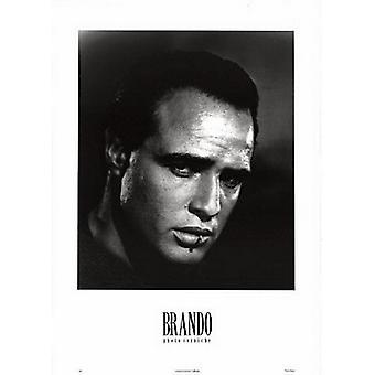 Marlon Brando Foto plakatutskrift (20 x 28)