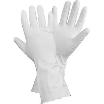 L+D CleanGo Derma-Protect 1462 Vinyl Household cleaning glove Size (gloves): 9, L 1 Pair