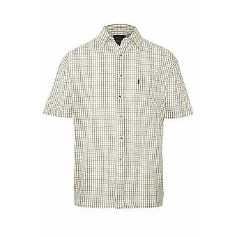 Mestari miesten Tattersall maan rento lyhythihainen paita