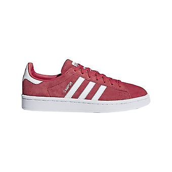Adidas Campus DB1018 universal all year women shoes