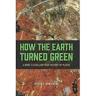 Miten maa kääntyi vihreä: lyhyt 3,8 miljardin vuoden historia kasveja