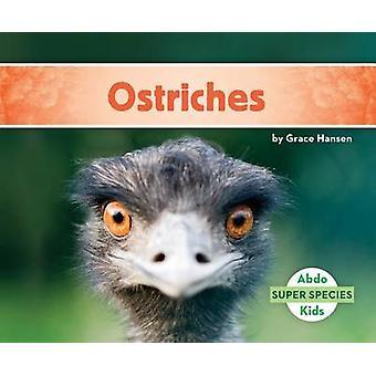 Ostriches by Grace Hansen - 9781680805475 Book