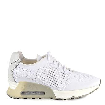 Ash Footwear Lucky White Knit Trainers