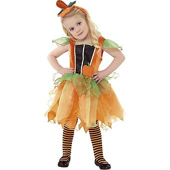 Pumpkin Fairy Costume, 3-4 Years, Toddler Age 3-4