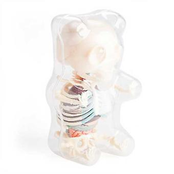 Gummy Bear 4D Anatomy Puzzle