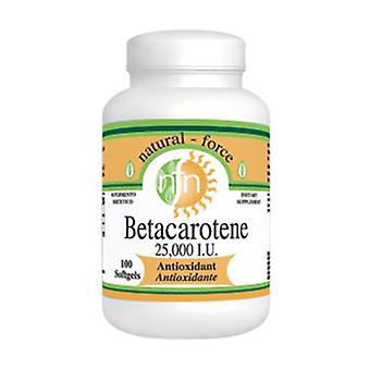 Bêta-carotène 100 perles