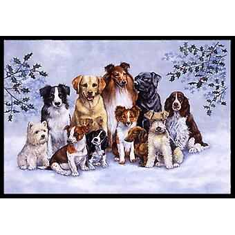 Carolines schatten BDBA316AMAT Winter honden Indoor of Outdoor Mat 18 x 27