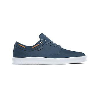 Etnies Dory Sc Trainers in Slate
