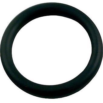 Jandy Zodiac 650500 Pool renare O-Ring