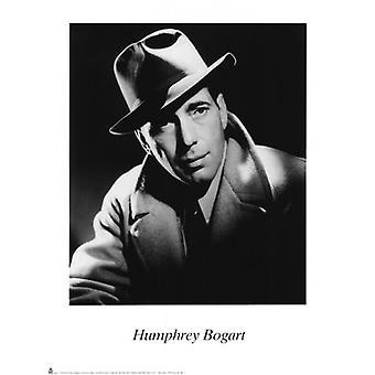 Humphrey Bogart Poster Print (12 x 16)