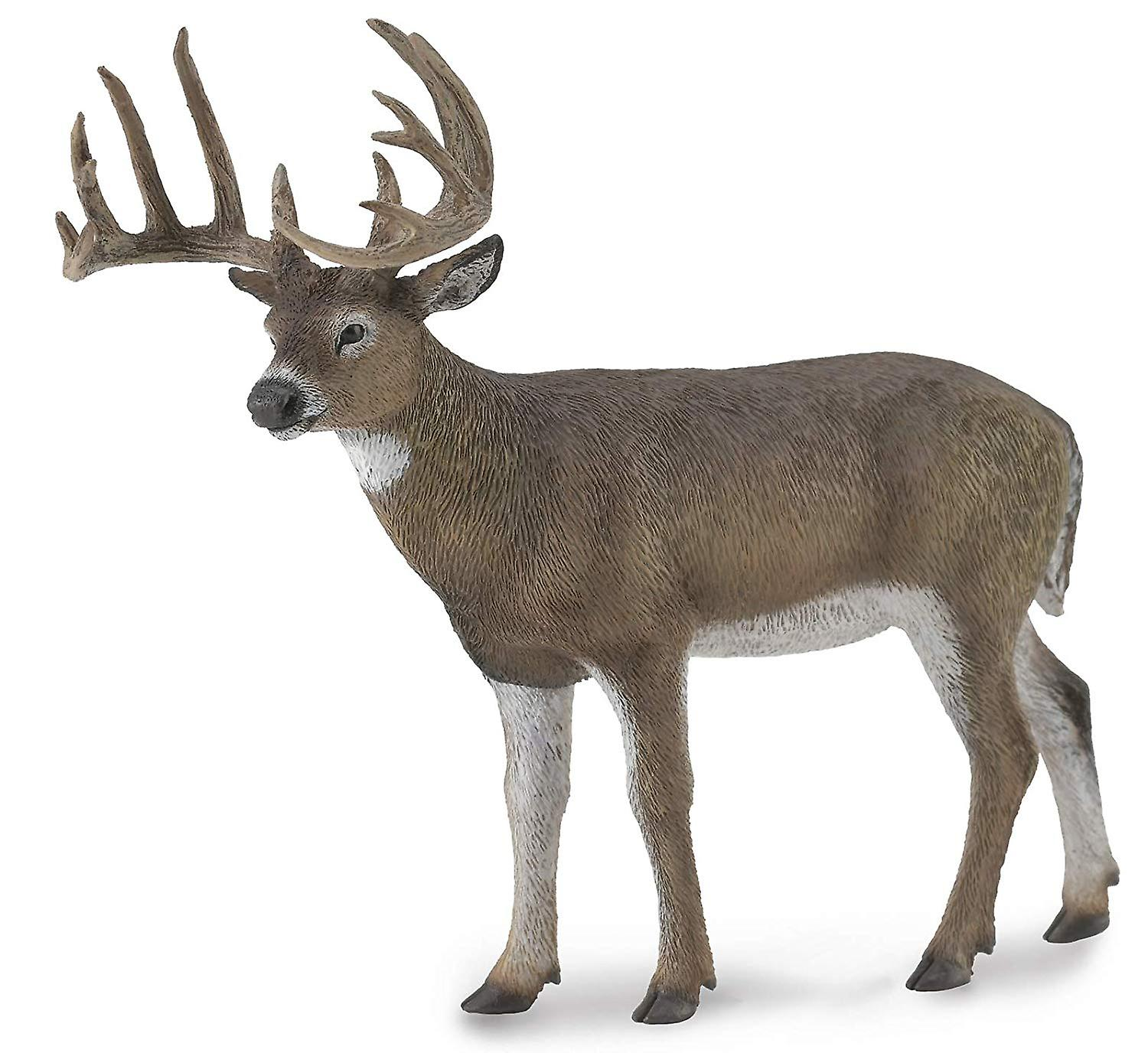 CollectA White-Tailed Deer