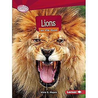 Lejon på jakt (Searchlight böcker rovdjur)