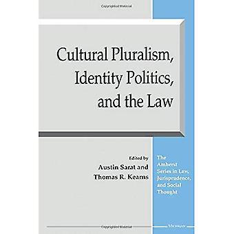 Kulttuurinen moniarvoisuus, identiteetti politiikka ja laki