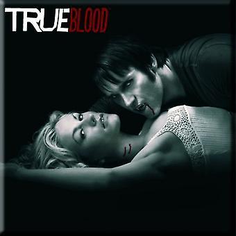 True Blood Kühlschrank Magnet klassische Promo Bild neue offizielle 76 x 76 mm