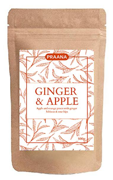 Praana Tea - Hot Ginger And Apple Fruit Infusion - Catering Pack 500g