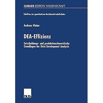 DEAEffizienz Entscheidungs und produktionstheoretische Grundlagen der Data Envelopment Analysis door Kleine & Andreas