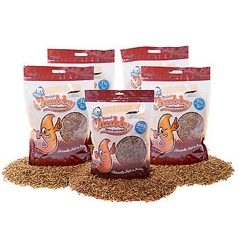 4.5kg dried chubby mealworms