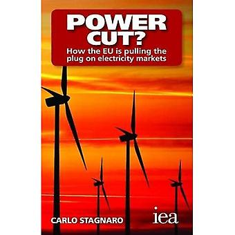 Power Cut?: How the EU is pulling the plug on electricity markets (Hobart Paperback)
