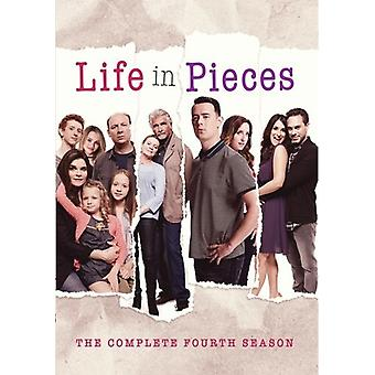 Life In Pieces: Completa cuarta temporada [DVD] importación de EE. UU.