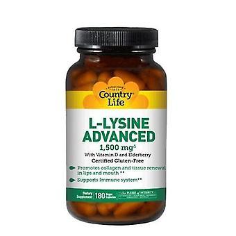 الحياة القطرية L-Lysine المتقدمة، 1500mg، 180 قبعات نباتي