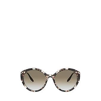 Prada PR 18XS ivoor havana vrouwelijke zonnebril