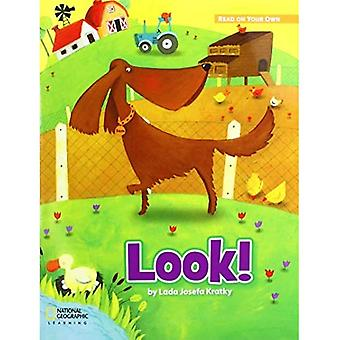 ROYO READERS LEVEL A LOOK