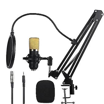Microphones condenser microphone bundle for recording  podcasting  voice over  streaming  home studio  youtube