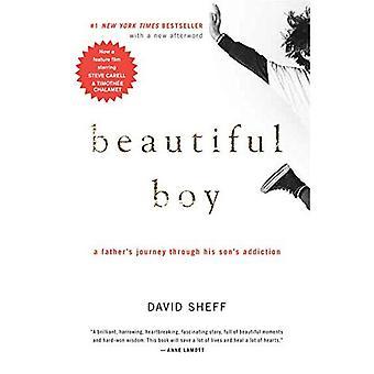 Vackra pojke: En fars resa genom hans sons missbruk