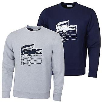Lacoste Herre bomuld Croc print sweater