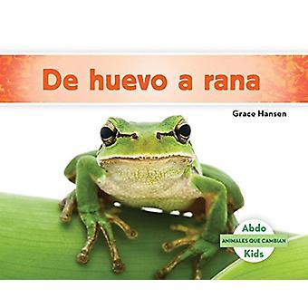 de Huevo a Rana (Becoming a Frog ) by Grace Hansen - 9781624026737 Bo