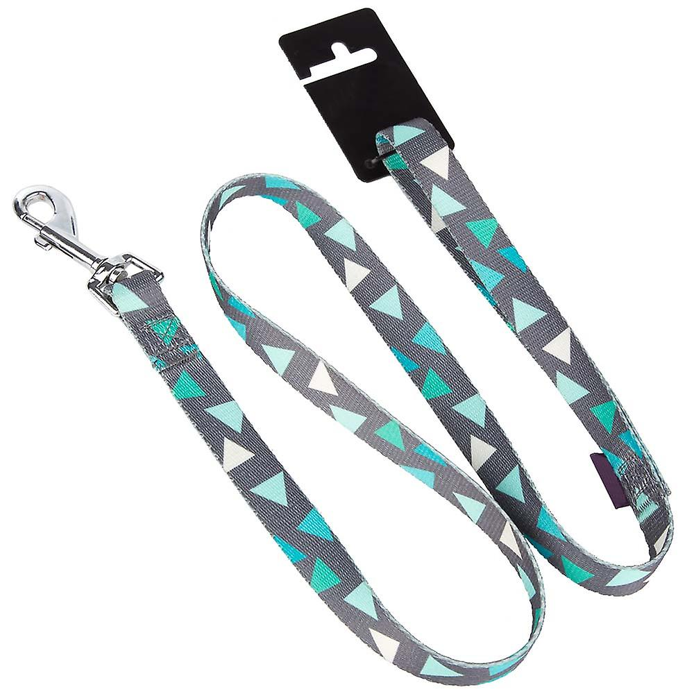 Pet Puppy/Small Dog Lead/Leash & Clip - Nylon - Green/Grey - 1m - 1.6cm - S