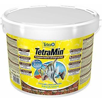 Tetra Bucket Min 10L 11,109 (Fish , Food , Warm Water)