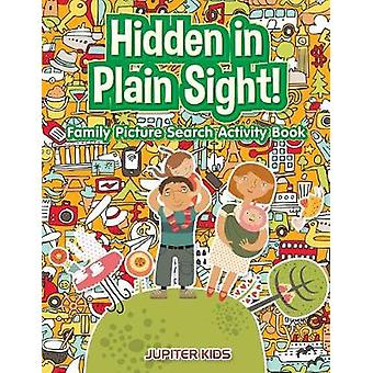 Hidden in Plain Sight Family Picture Search Activity Book by Jupiter Kids