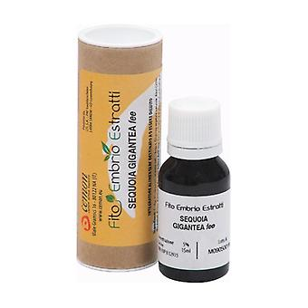 Sequoia Gigantea Fee 15 ml