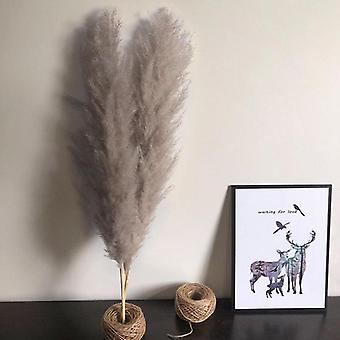 2/3 Pcs Natural Dried Flower Pampas Grass Reed Home Decoration