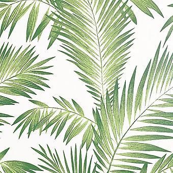 Peel und Stick tropischen Palm Grün Wallpaper
