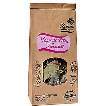 Ribero Strawberry Leaves (Small pets , Dry Food and Mixtures)