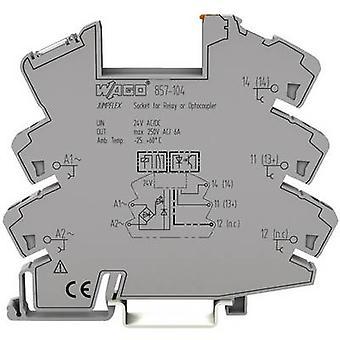 WAGO 857-104 שקע ממסר (W x H x ד) 6 x 81 x 94 mm 1 pc (עם)