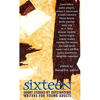 Seize ans: Short Stories par écrivains éminents pour jeunes adultes