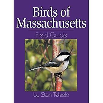 Vogels van Massachusetts Field Guide (veld gidsen)